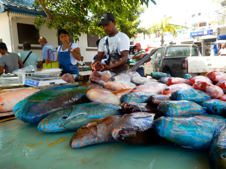 Mauritius-Grand-Baie-Fish-Market
